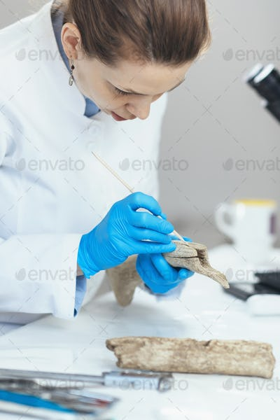 Archaeology Researchers Analyzing Ancient Antler Tool in Laboratory