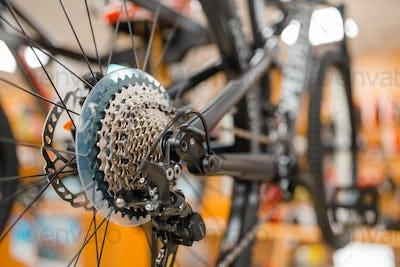 Mountain bike, rear wheel with gear shift system