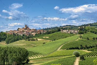 Monferrato, Italy: landscape at summer
