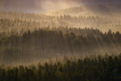 Kleiner Winterberg silhouettes, Saxon Switzerland, Germany
