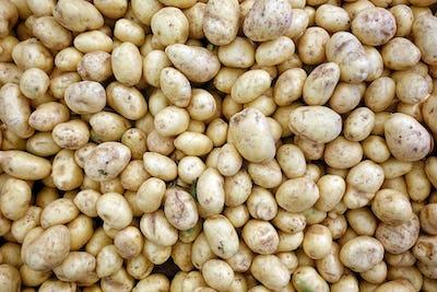 Vegetable Potato