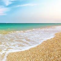 Beautiful coast of beach. Nature composition.