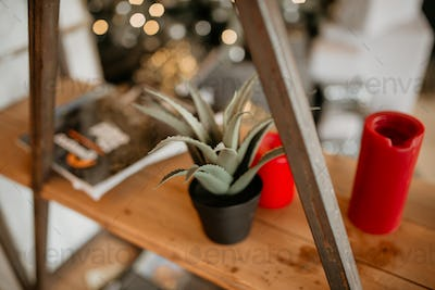 Loft shelf with aloe and candles