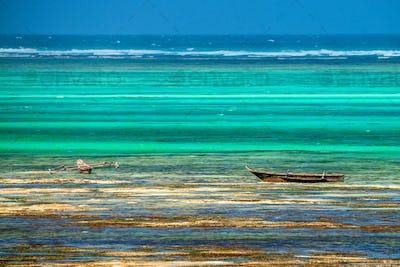 Wooden boats at low tide on beach in Zanzibar