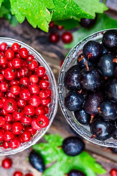 Ripe redcurrant and blackcurrant in glass bowls
