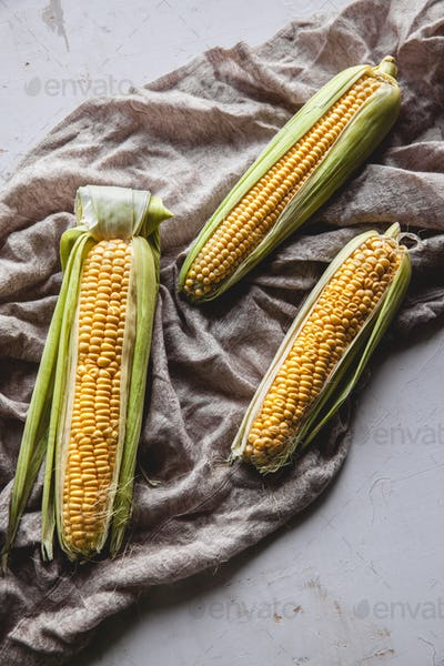 Raw Corns Freshly Picked with Green Cornhusk on Rustic Table Vintage Background Top View