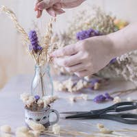 Cropped view hand of woman arrangement the flower in glass vase