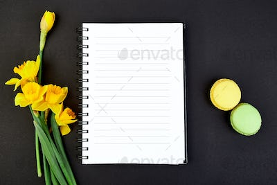 empty notebook with spring flowers narcissus