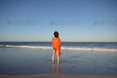 Rear view of mixed race woman standing on beach in the sunshine