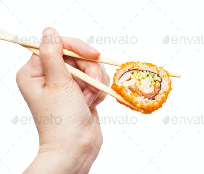 chopsticks hold california ebi roll isolated