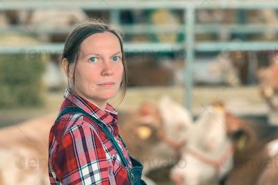 Female farmer on cow dairy farm