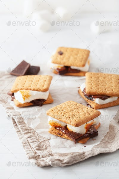 homemade marshmallow s'mores with chocolate on crackers