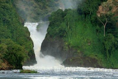Murchison Falls NP, Uganda, Africa