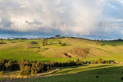 Farming Land