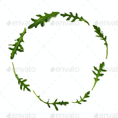 Pattern from arugula in round frame isolated