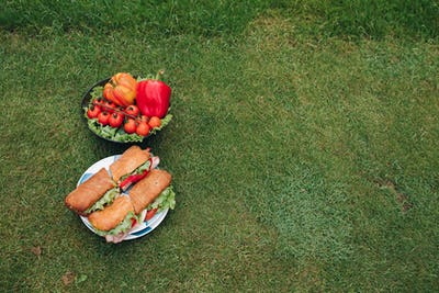 Sandwiches and veggies on the grass.Top view of two plate of fresh beautiful eco vegetable