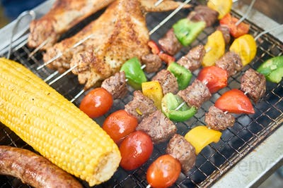 Vegetables and meat on the grill
