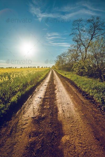 Sunshine and rural road in Bakota