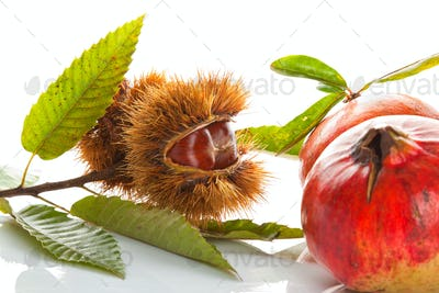 Chestnuts with pomegranate