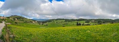 Green countryside of the interior of Zante
