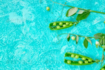 Flat lay composition with delicious fresh green peas