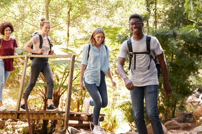 Young adult friends crossing a footbridge during a hike in a forest, full length