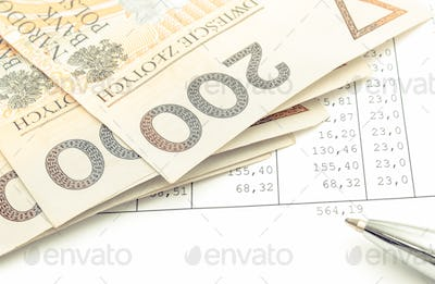 Polish currency money and ballpen on spreadsheet. Business concept