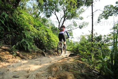 Cross country biking in summer forest