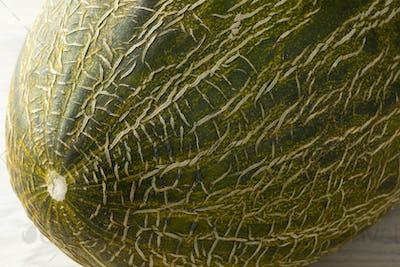 Piel de sapo melon close up