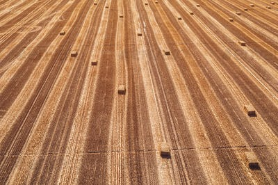 Aerial view of square hay bales in field after harvest