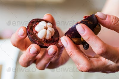 Close up halves of fresh mangosteen fruit in woman's hand