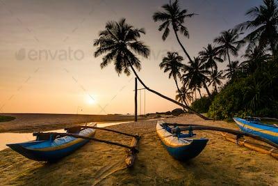Fishing boat on the beach at sunset. Sri Lanka