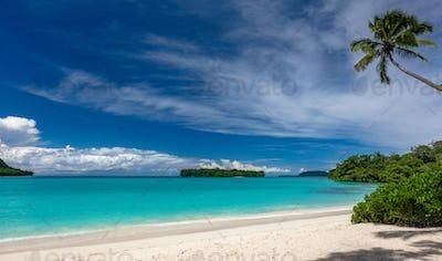 Port Orly sandy beach with palm trees, Espiritu Santo Island, Va