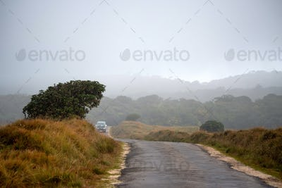Road leading to Horton Plains, Sri Lanka