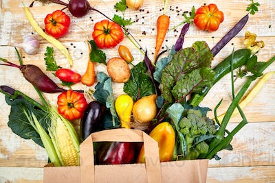 Paper bag of different health vegetables food