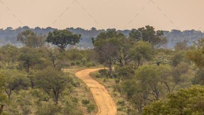 Dirt road S4 through savanna