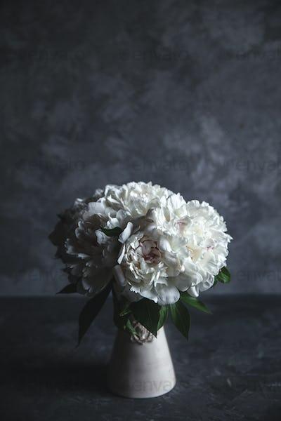Beautiful peonies on grey concrete background. Wedding, birthday