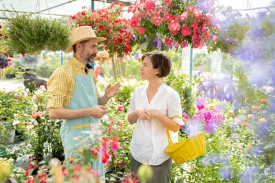 Confident male gardener consulting one of buyers of his flowers