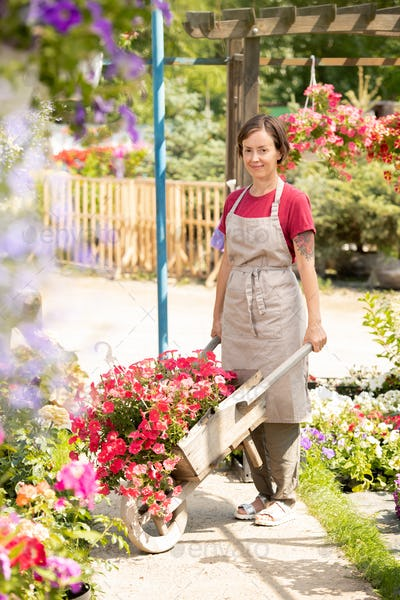 Young garden center worker with cart standing on aisle between flowerbeds