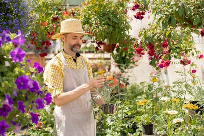 Bearded farmer in hat and apron holding pot with garden flower