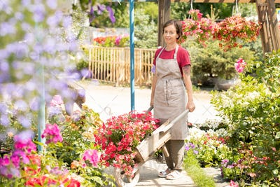 Young female gardener with farmer cart standing by one of flowerbeds