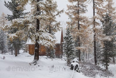 Wooden cottage in the forest during a snowfall