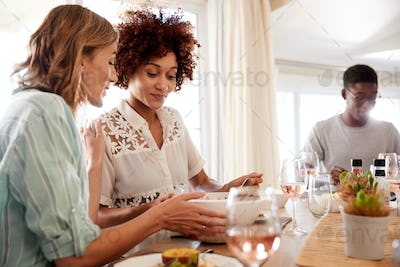 Young adult friends talking at the dinner table during lunch, close up