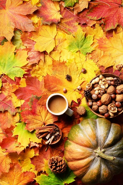 Pumpkin, wooden bowl of nuts, coffee cup, cone, cinnamon over beige plaid and colorful leaves