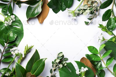 Creative layout made of tropical green leaves. Flat lay. Top view. Summer or spring nature concept