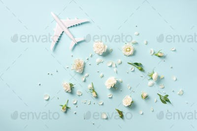 Travel concept with white plane and flowers, petals on blue background. Top view, flat lay. Copy
