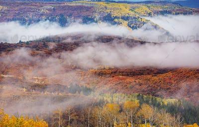 Autumn in Colorado