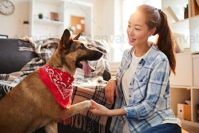 Big Dog Giving Paw