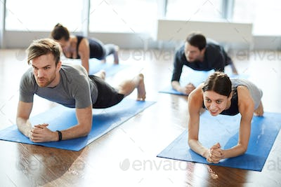 Motivated young people doing elbow plank