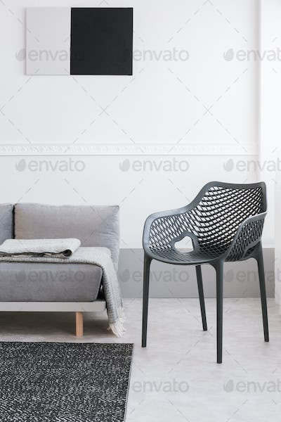 Monochrome living room interior with fancy grey chair and sofa